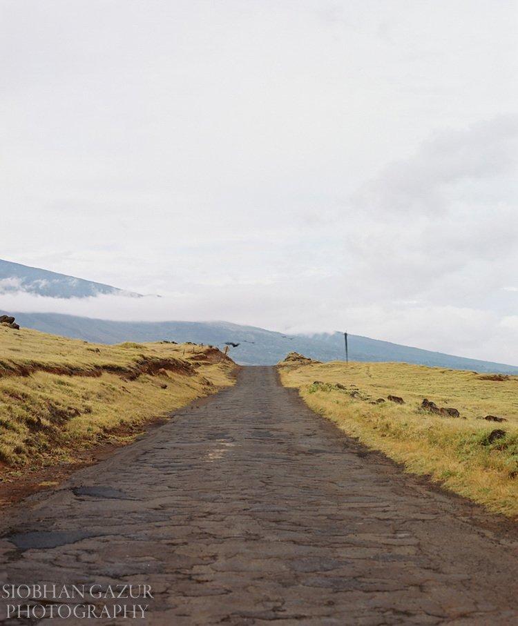 Maui - Road Trip