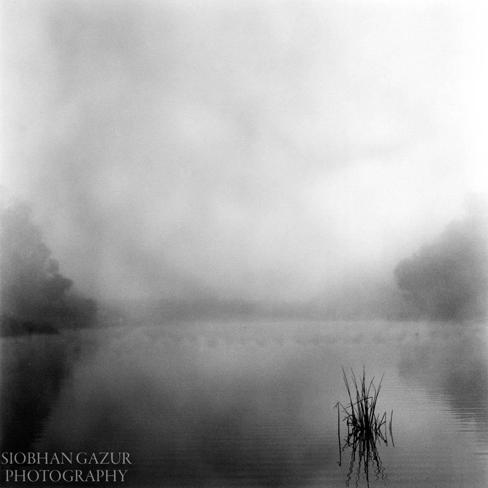 Morning Fog | Travel Photography