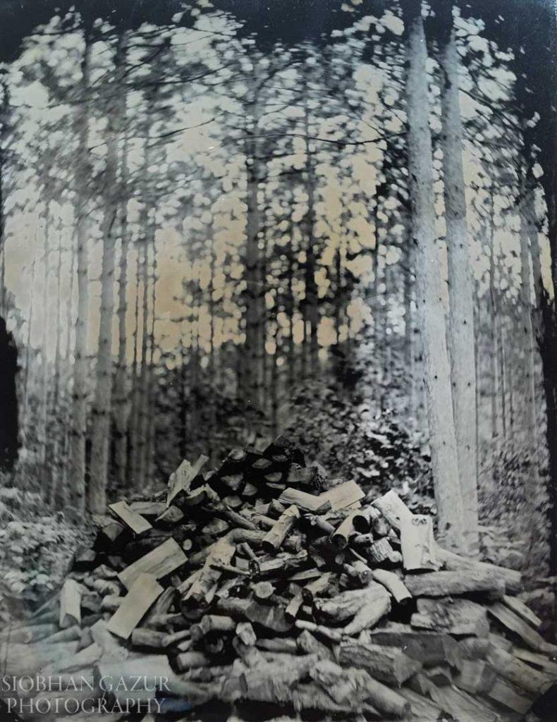 Log Pile | Tin Type Photography