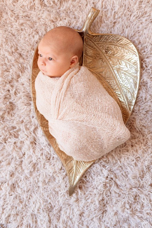 In a leaf | San Diego Newborn Photography