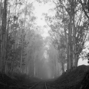 Blind Road